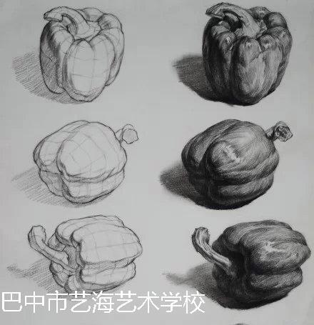 素描静物写生的观察方法和作画步骤大致上和素描石膏写生